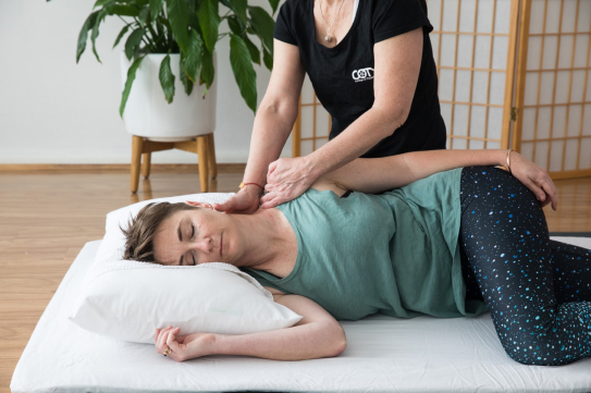 Diploma of Shiatsu and Oriental Therapies (HLT52215)